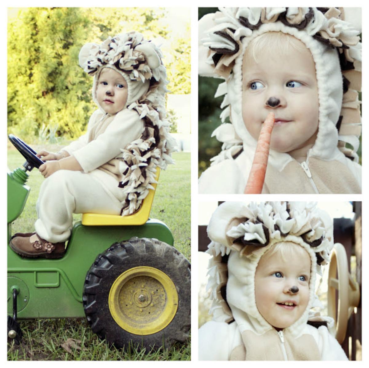 Animal Costume DIY Ideas