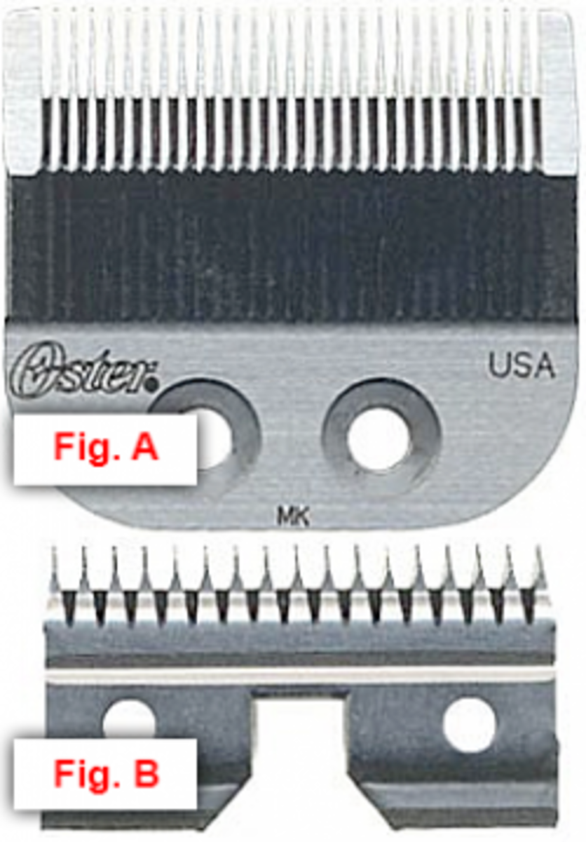 An Oster blade, front, followed by the moving blade that's fastened on the rear.