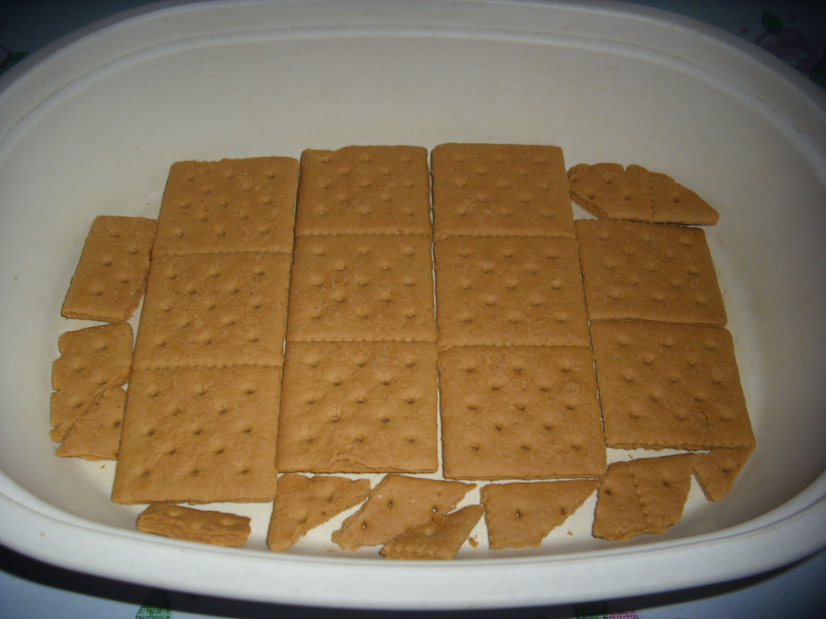 Graham Crackers lined at the bottom of a dessert bowl.