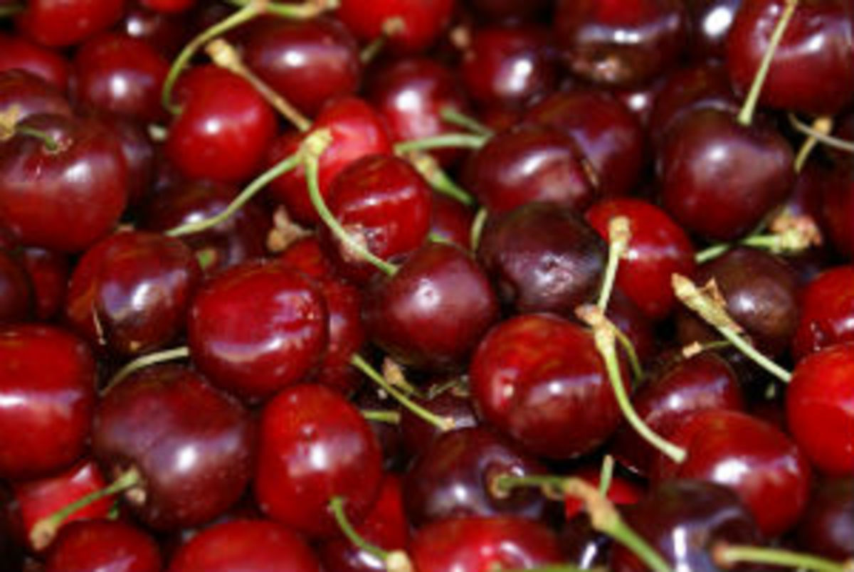 Are these glace cherries? No. Or not yet, anyway.