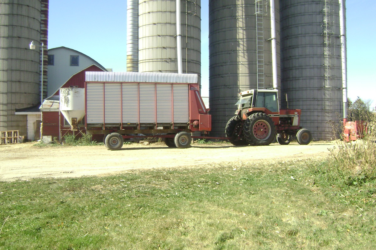 Tractor Pulling a Corn Silage Wagon