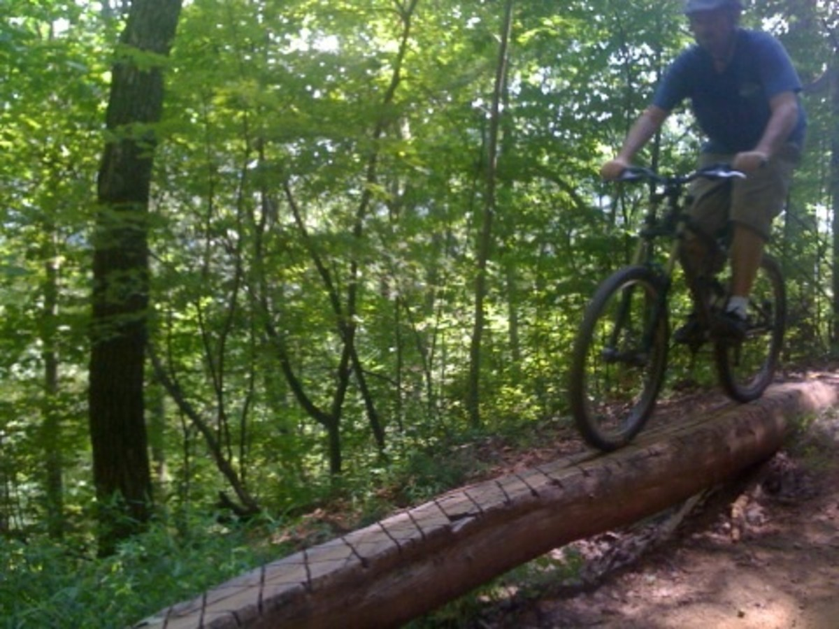 One of many trail features you will find at mountain biking destinations like Dupont State Forest and Bent Creek.
