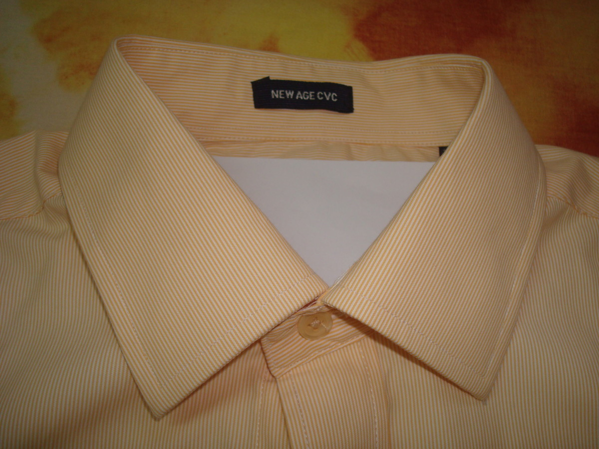 shirt collar with stand