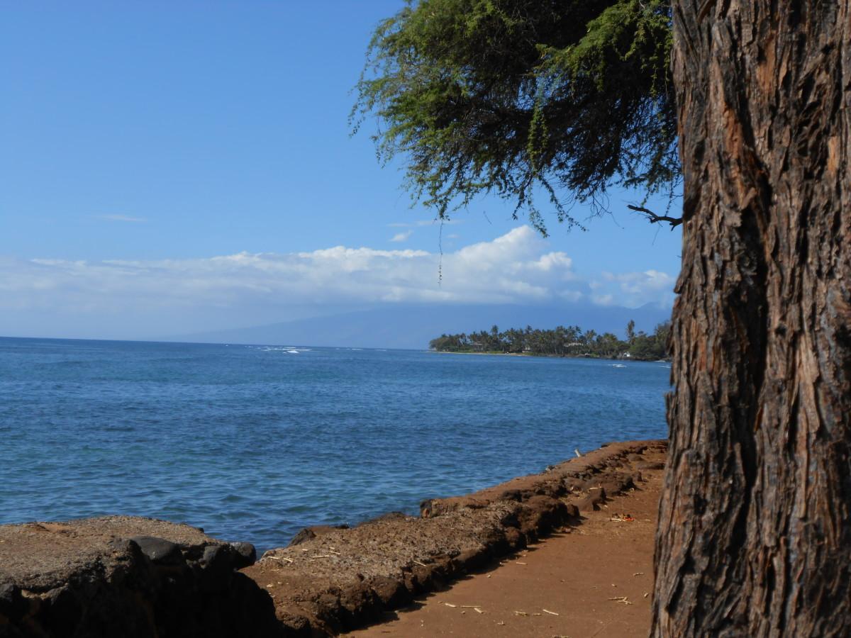 From a park in Lahaina on Maui
