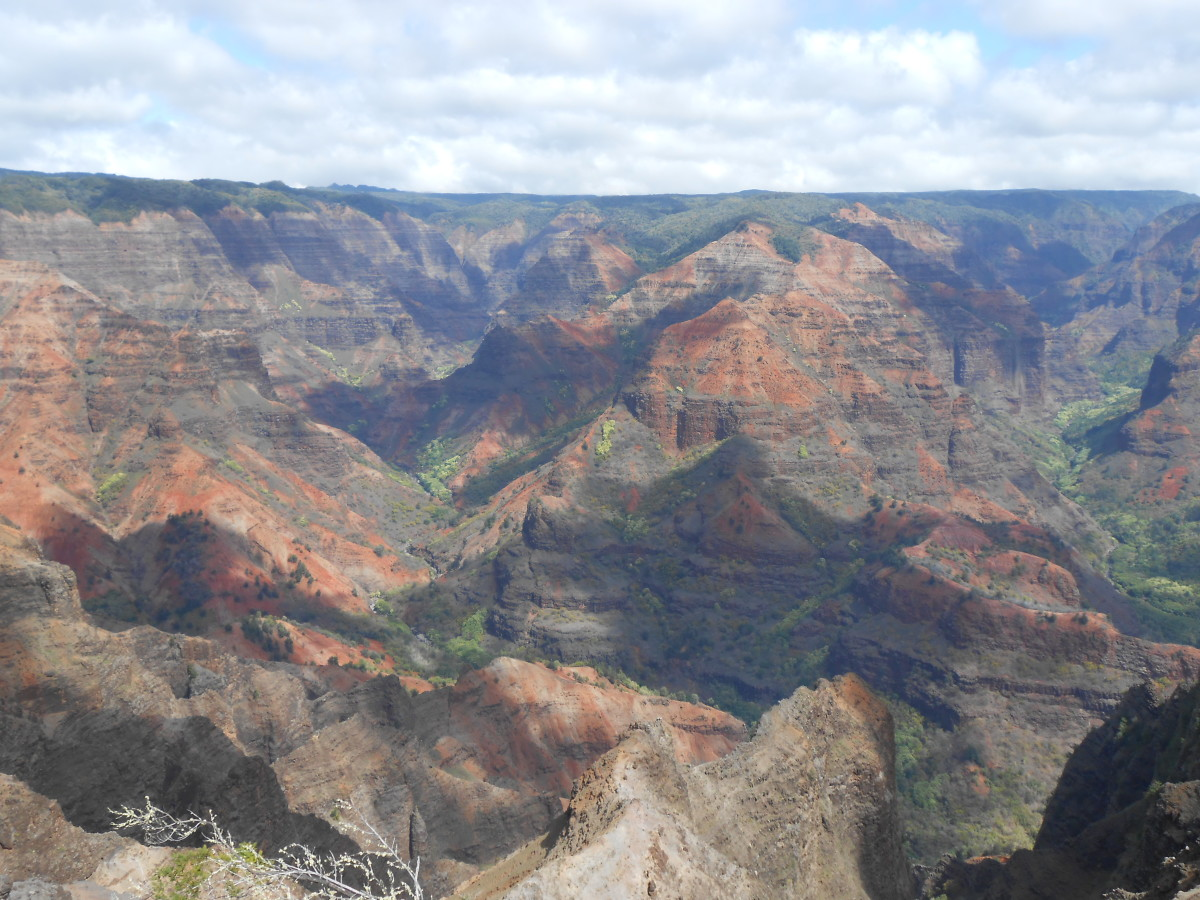 Just one more picture of Waimea Canyon because it's too beautiful not to include twice!