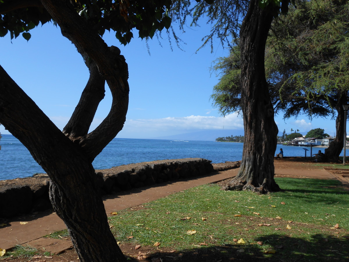 Photo from a park in Lahaina on Maui
