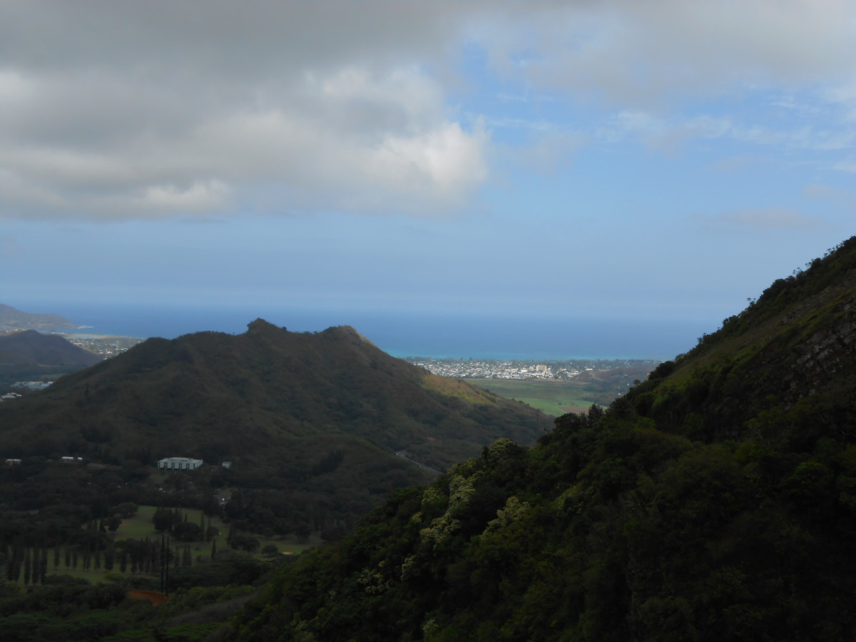 From the rain forest looking out to the ocean on Oahu