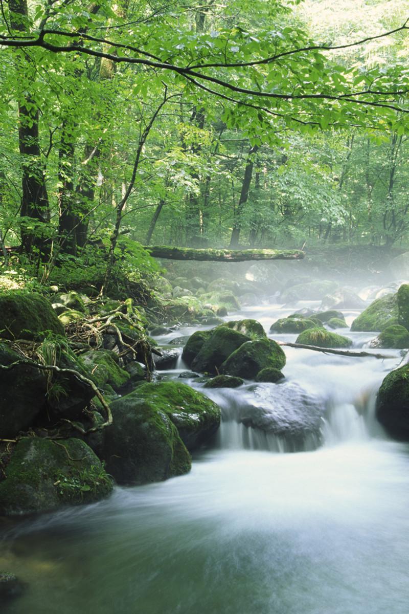 A Healing River