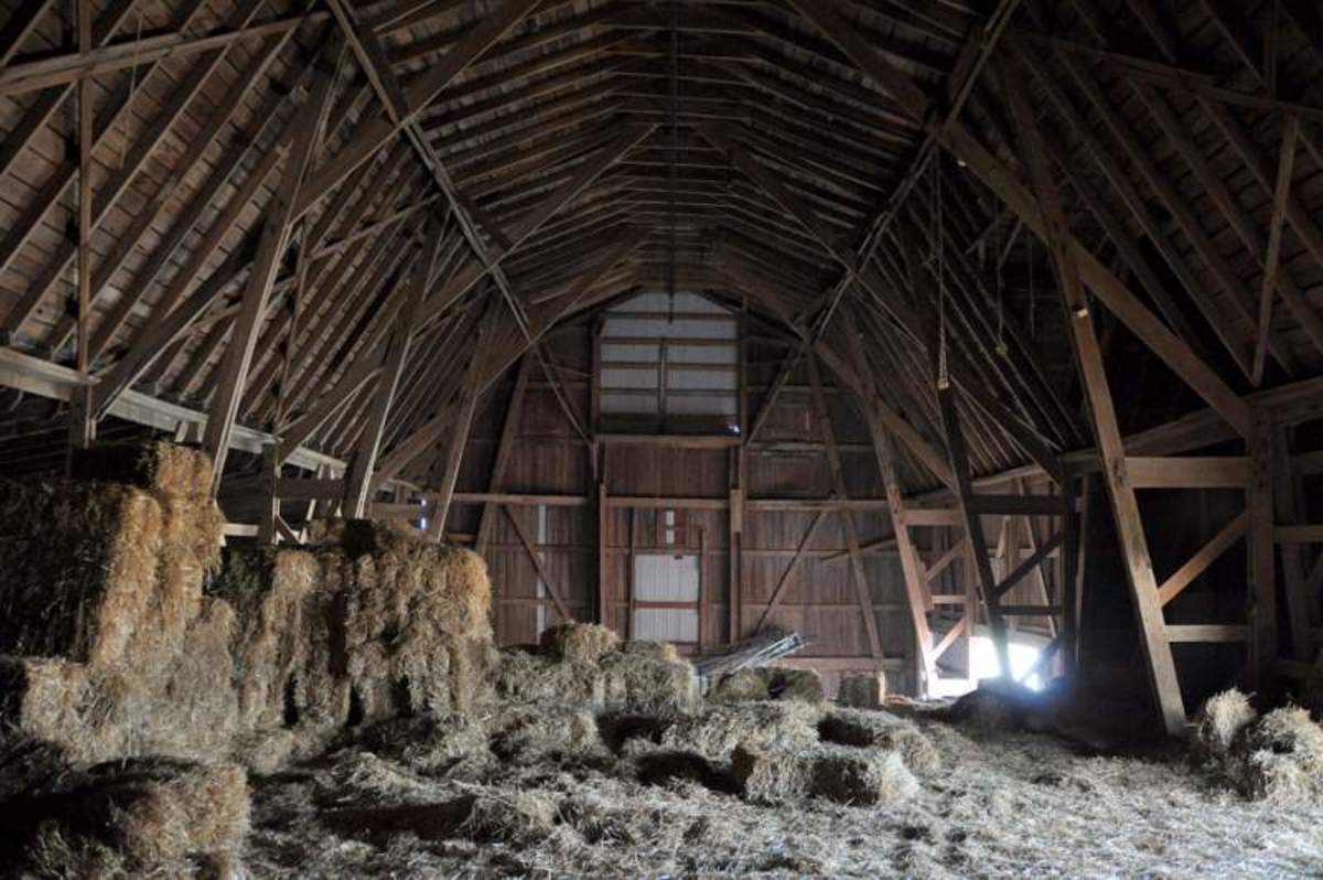 Inside the old barn where I grew up.