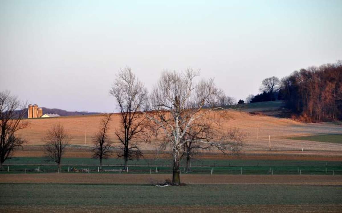 photo-essay-old-barns