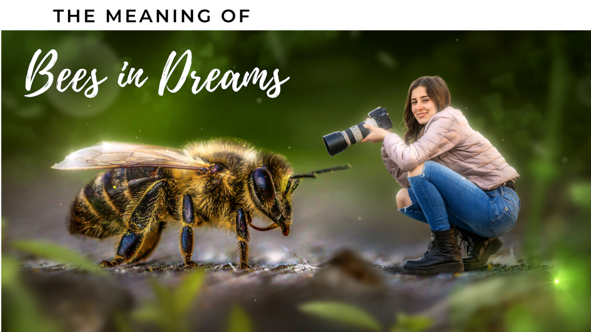 The Symbolism of Dreams About Bees
