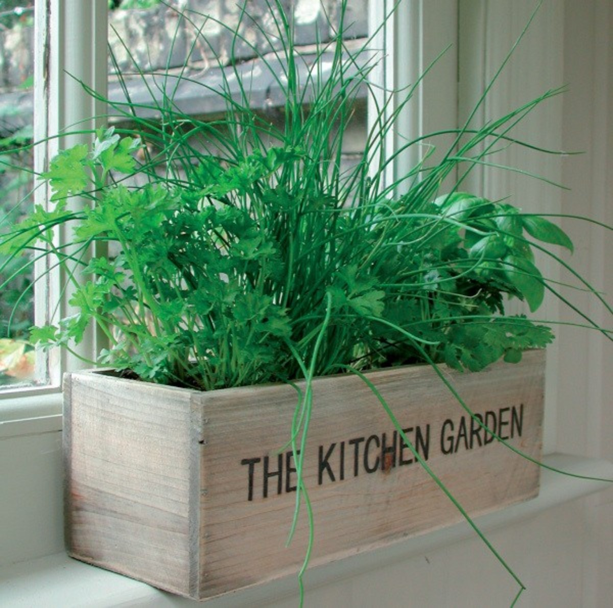 Perk Up The Kitchen With Herb Plants:  Design Inspiration
