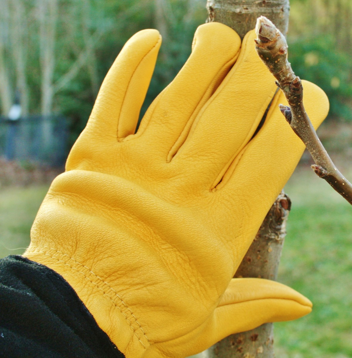 Gold Leaf gloves are the best gardening gloves I've ever used.