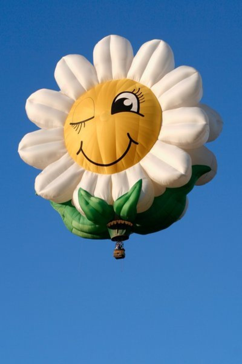 Daisy Hot Air Balloon Smile and Wink