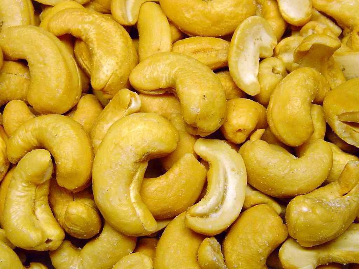 salted and toasted cashews