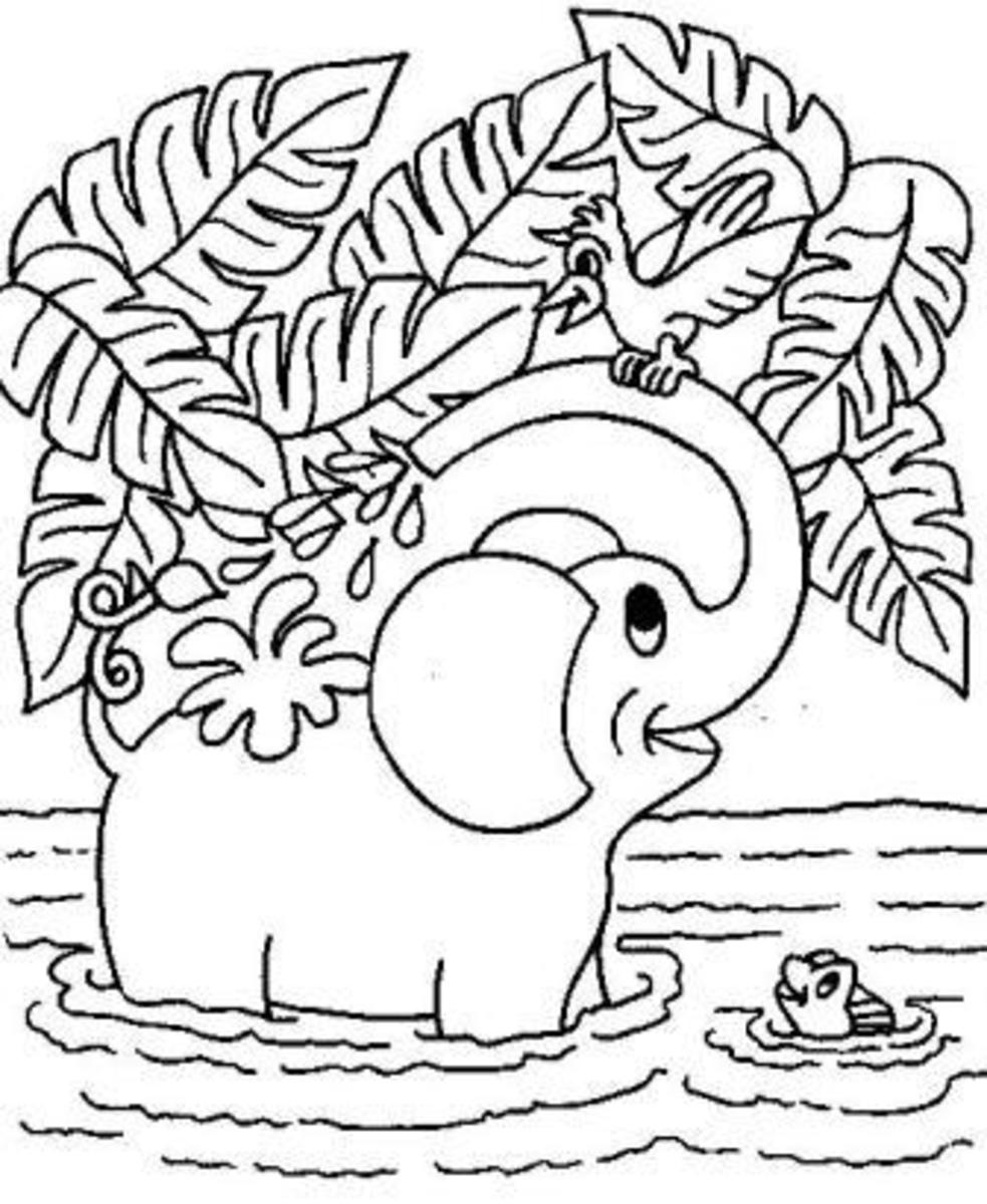 Elephant Printable Coloring Pages  hubpages