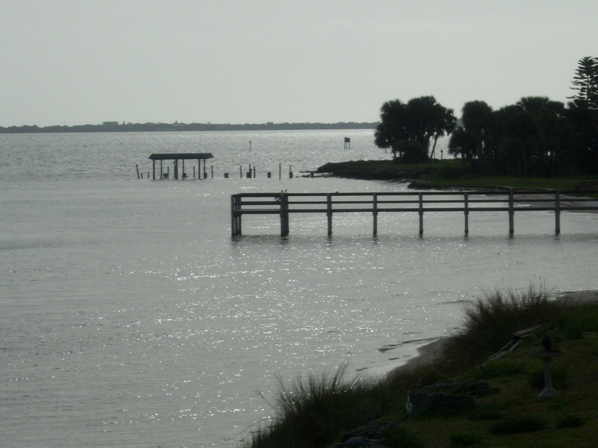 Fishing flats of Palm Bay Florida's Indian River shore line.