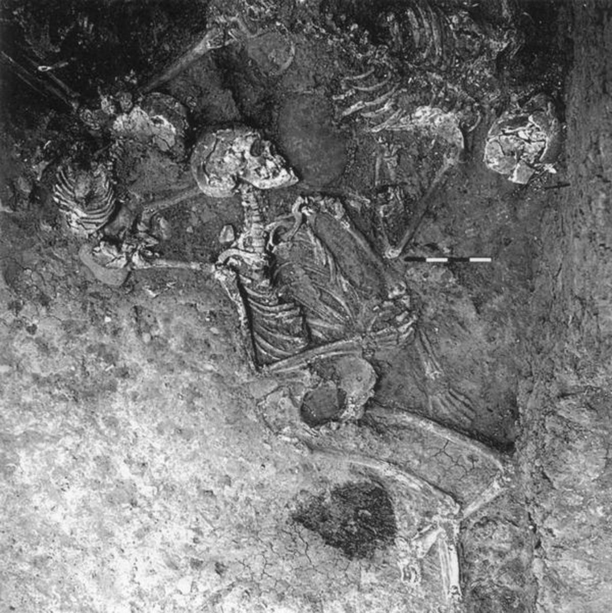 Excavation of reported defenders of Nineveh.