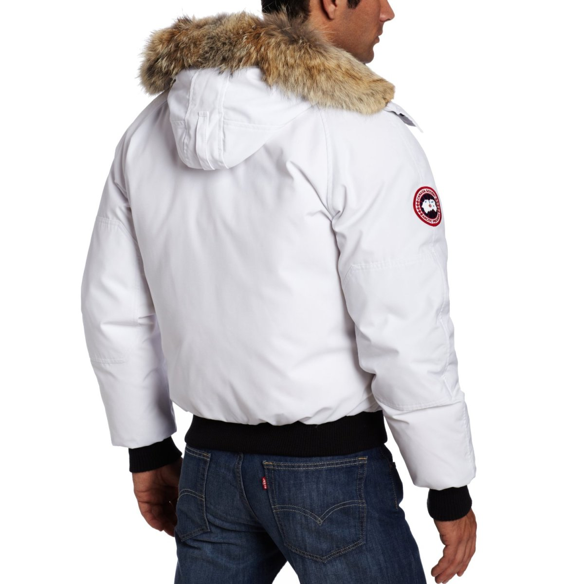 a complete review of the chilliwack bomber jacket by canada goose. Black Bedroom Furniture Sets. Home Design Ideas