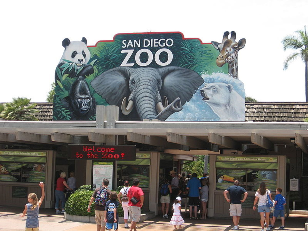 what-to-do-when-visiting-balboa-park-san-diego