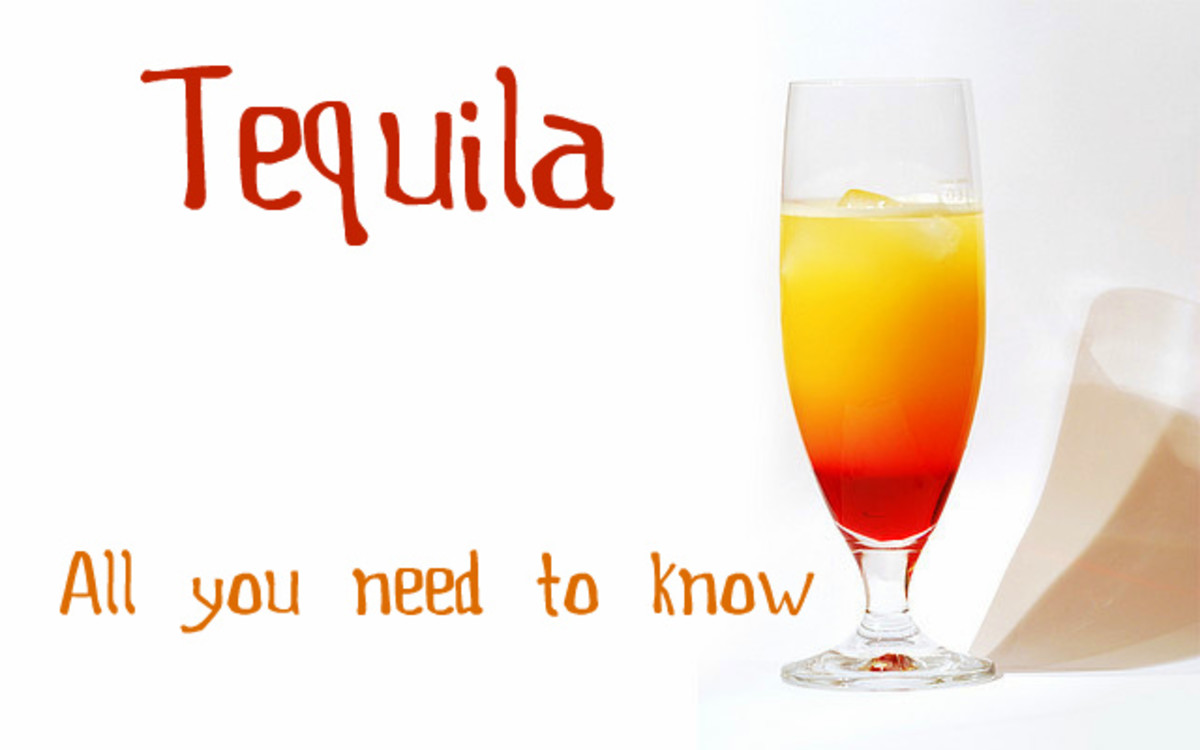 What Do You Want to Know About Tequila?