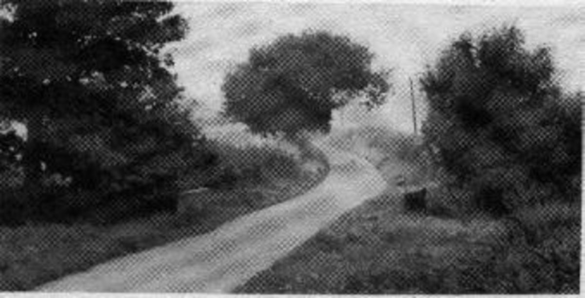 Crossroads Bridge - haunted by The Watercress Lady