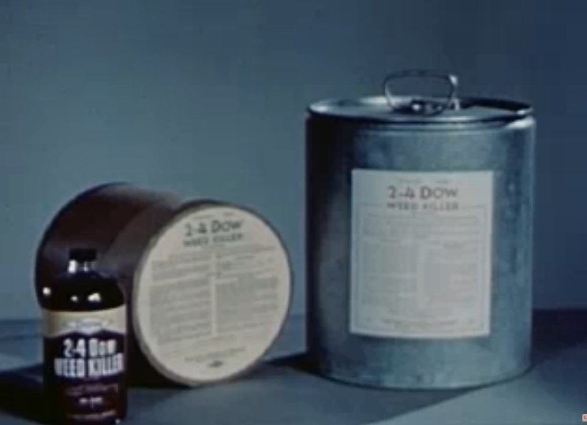A 1947 photo of Dow's highly toxic 2-4 broadleaf herbicide, which was first use on US farms in 1948.