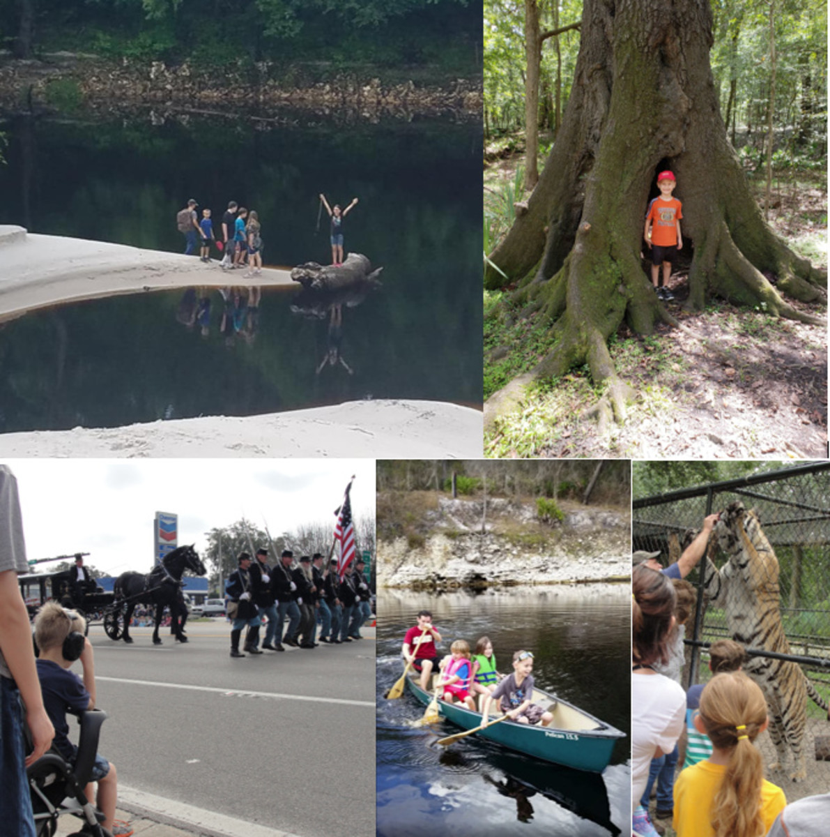 Activities for Kids & Field Trip Ideas in Live Oak, Florida