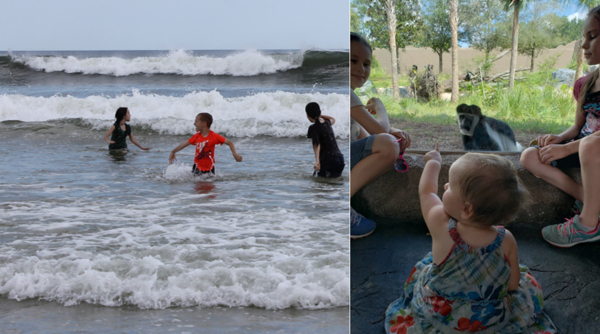 Our two favorite places: the beach & the zoo