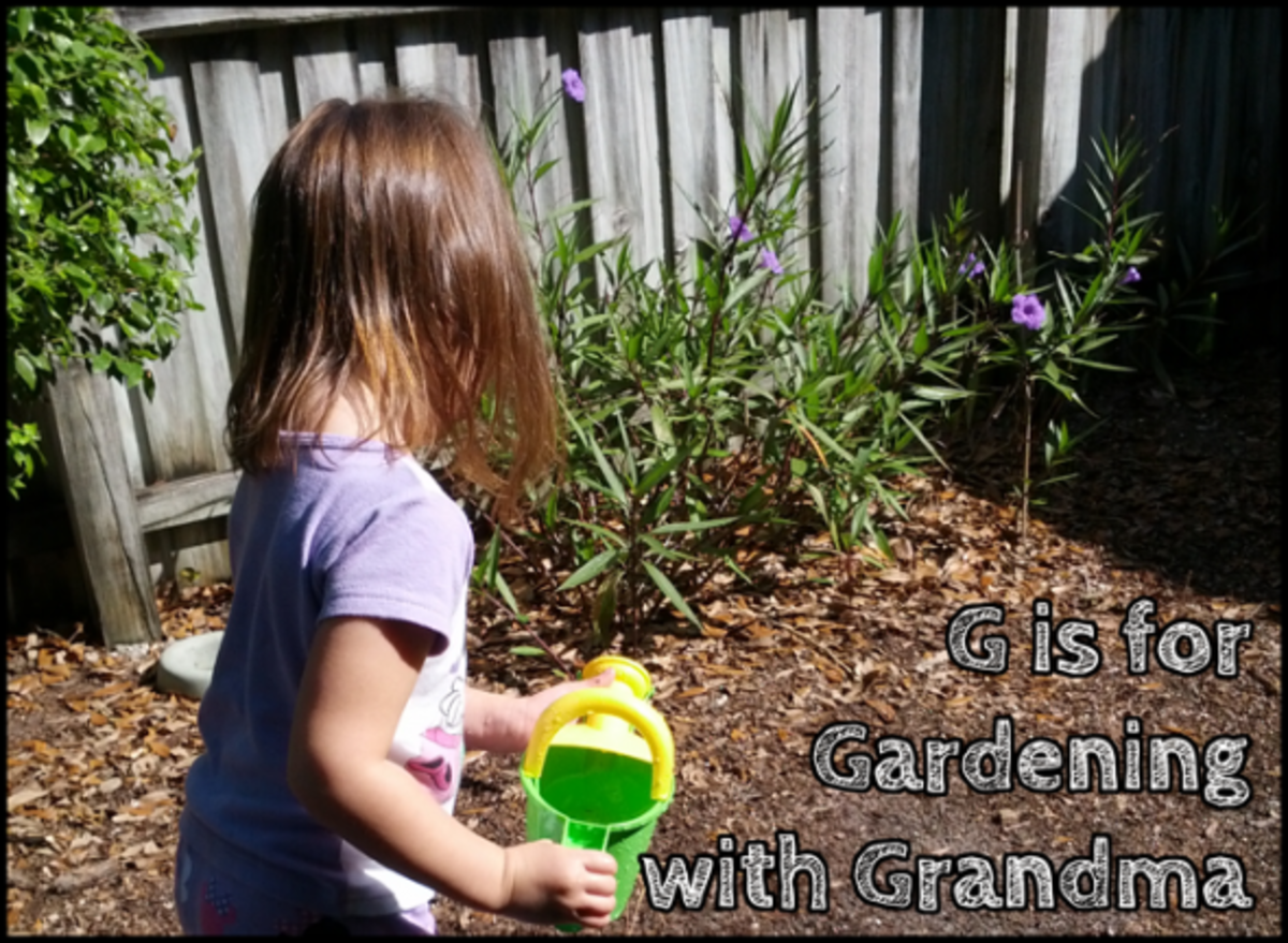 g is for gardening with grandma alphabet activities for kids