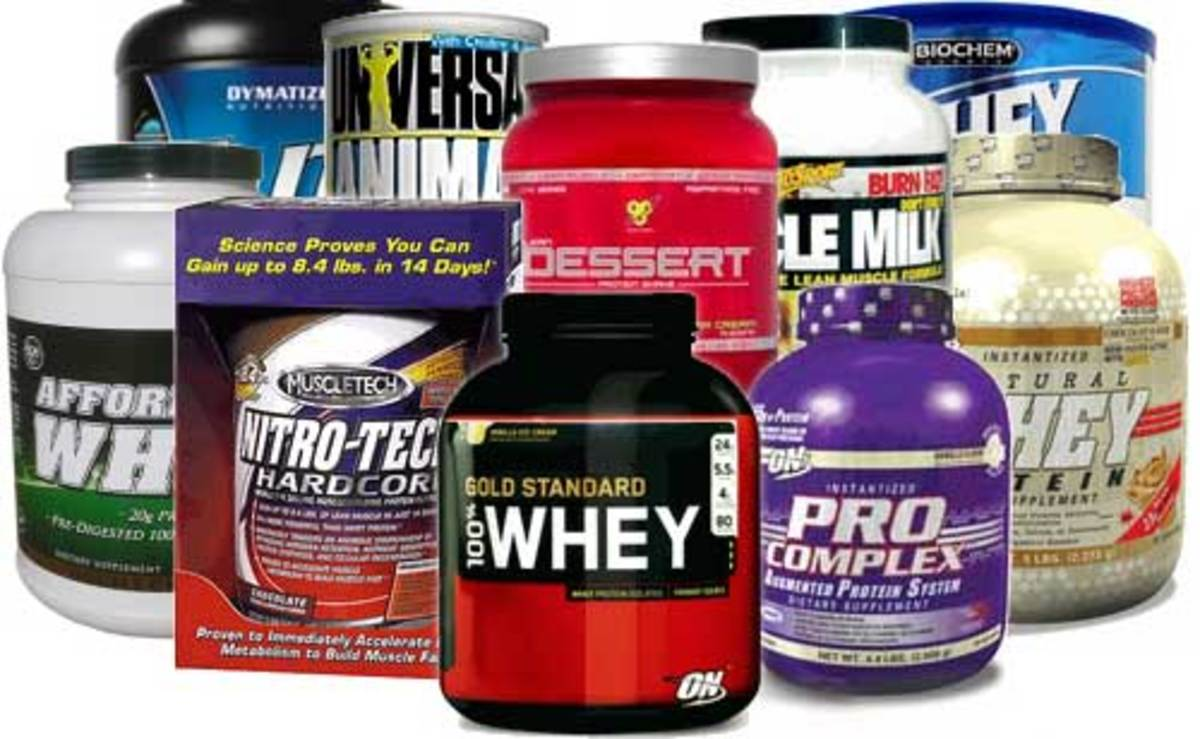 Best Protein Powder(s) to lose weight & gain muscle? HubPages