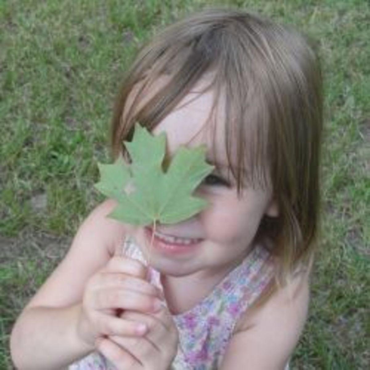 Botany Scavenger Hunt & Field Trip Ideas