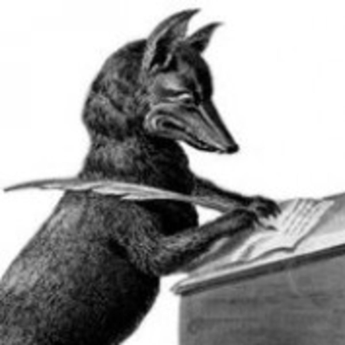 Poet Writer Fox