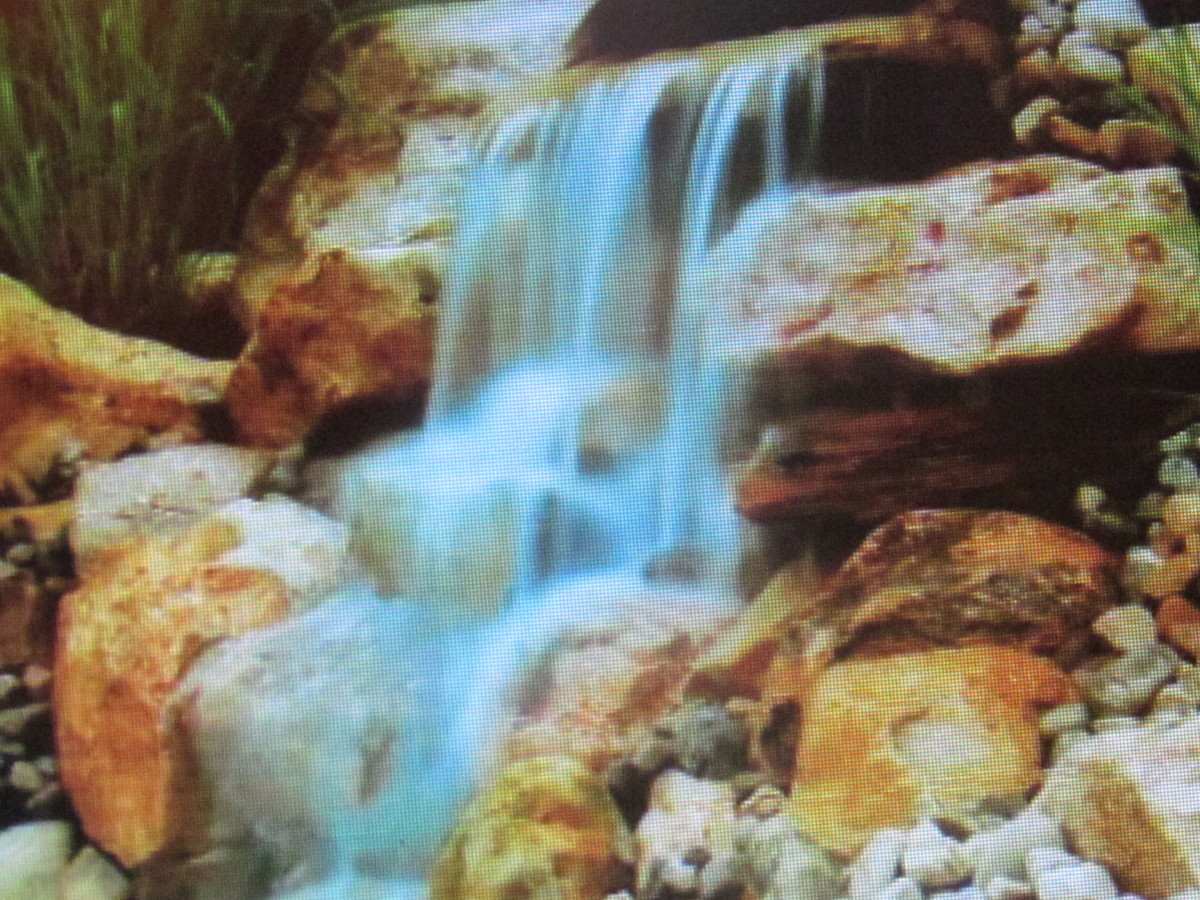 """A beautiful waterfall enhances the environment of """"The Merion"""" as a perfect location for your next gathering."""