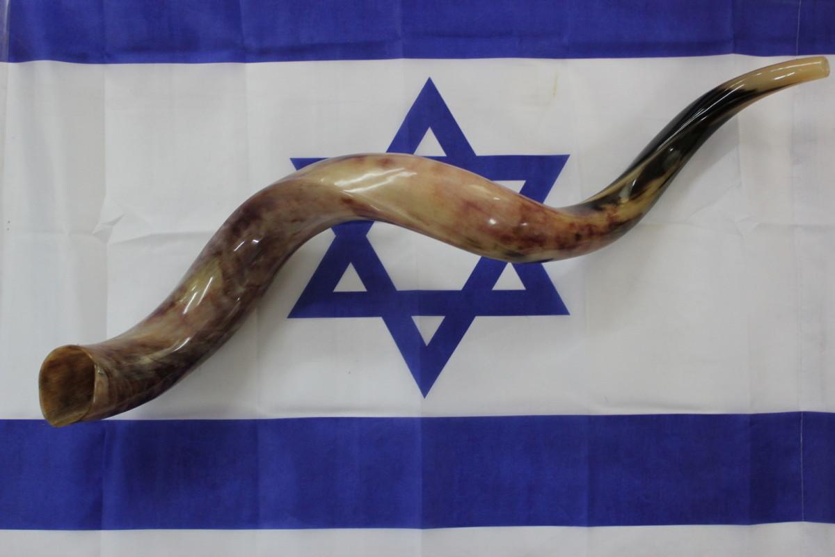 Yemenite Shofar and Flag of Israel