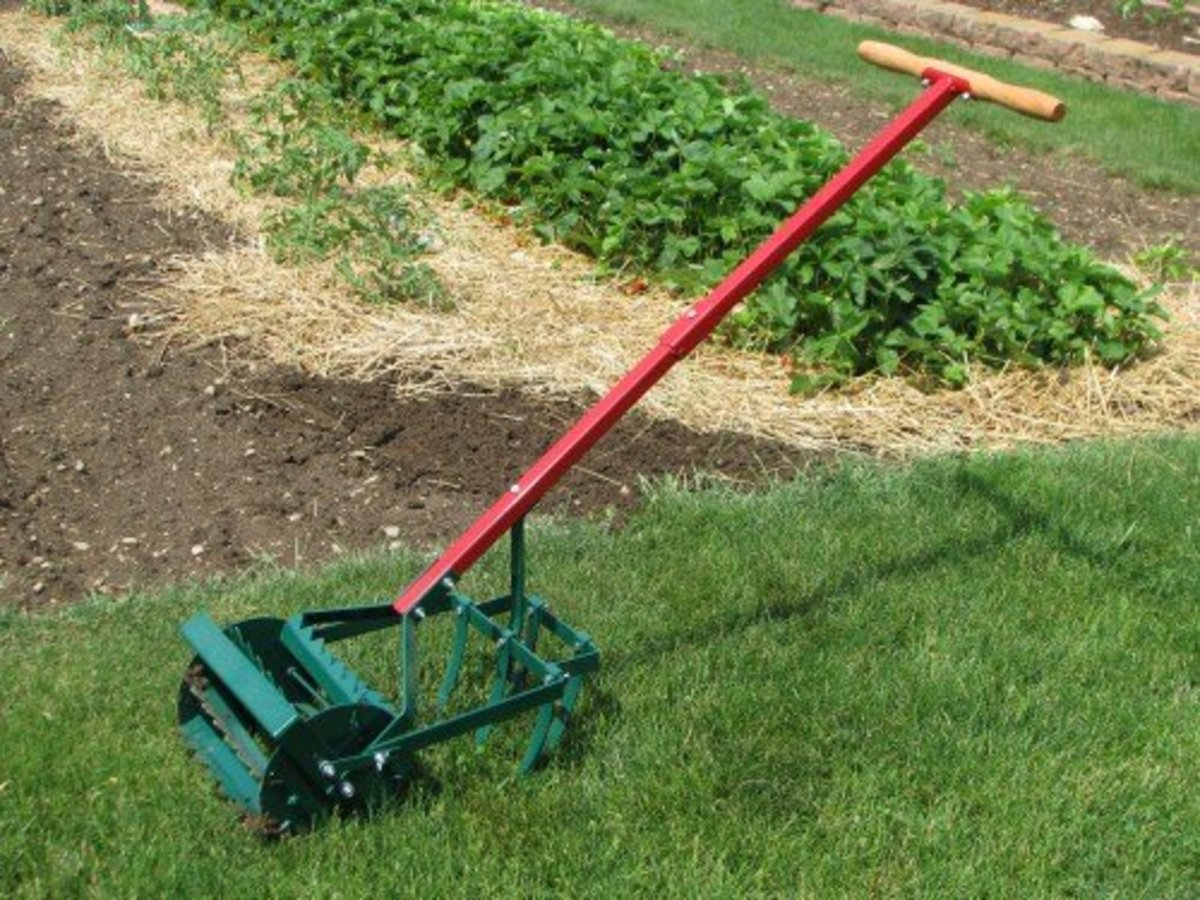 Amish made Weed and Till Cultivator.