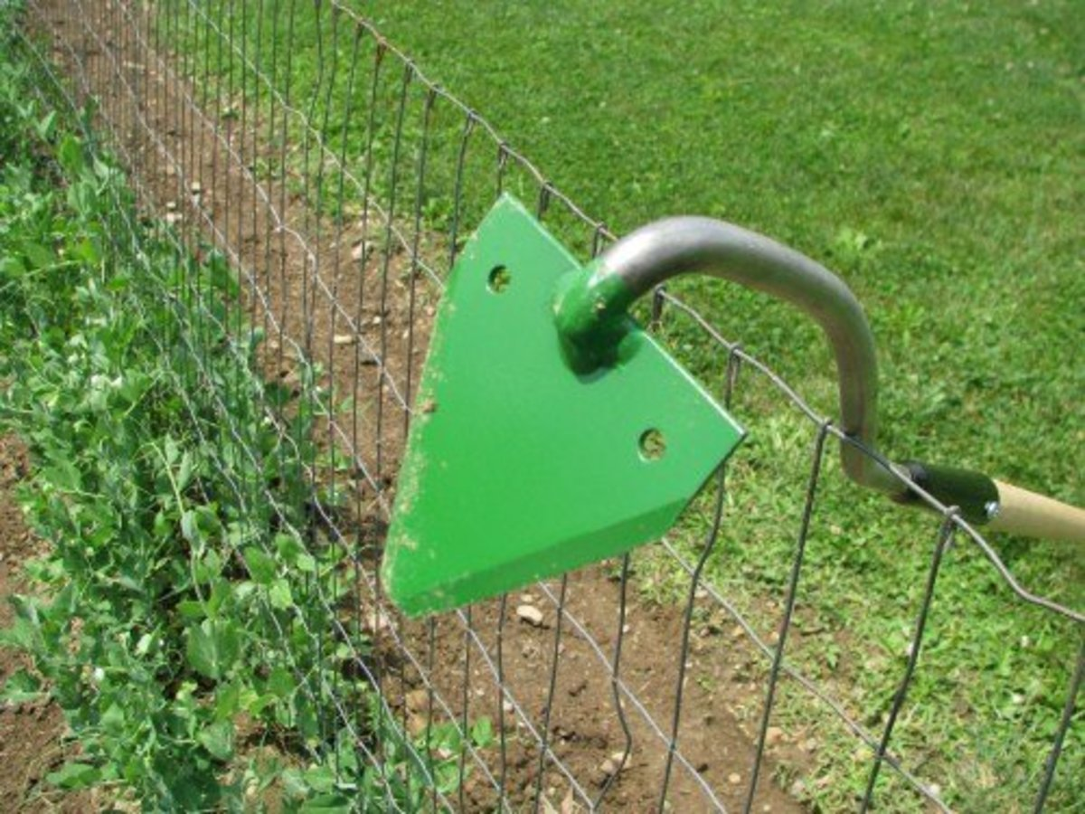 Amish sickle bar hoe is a popular light weight garden tool