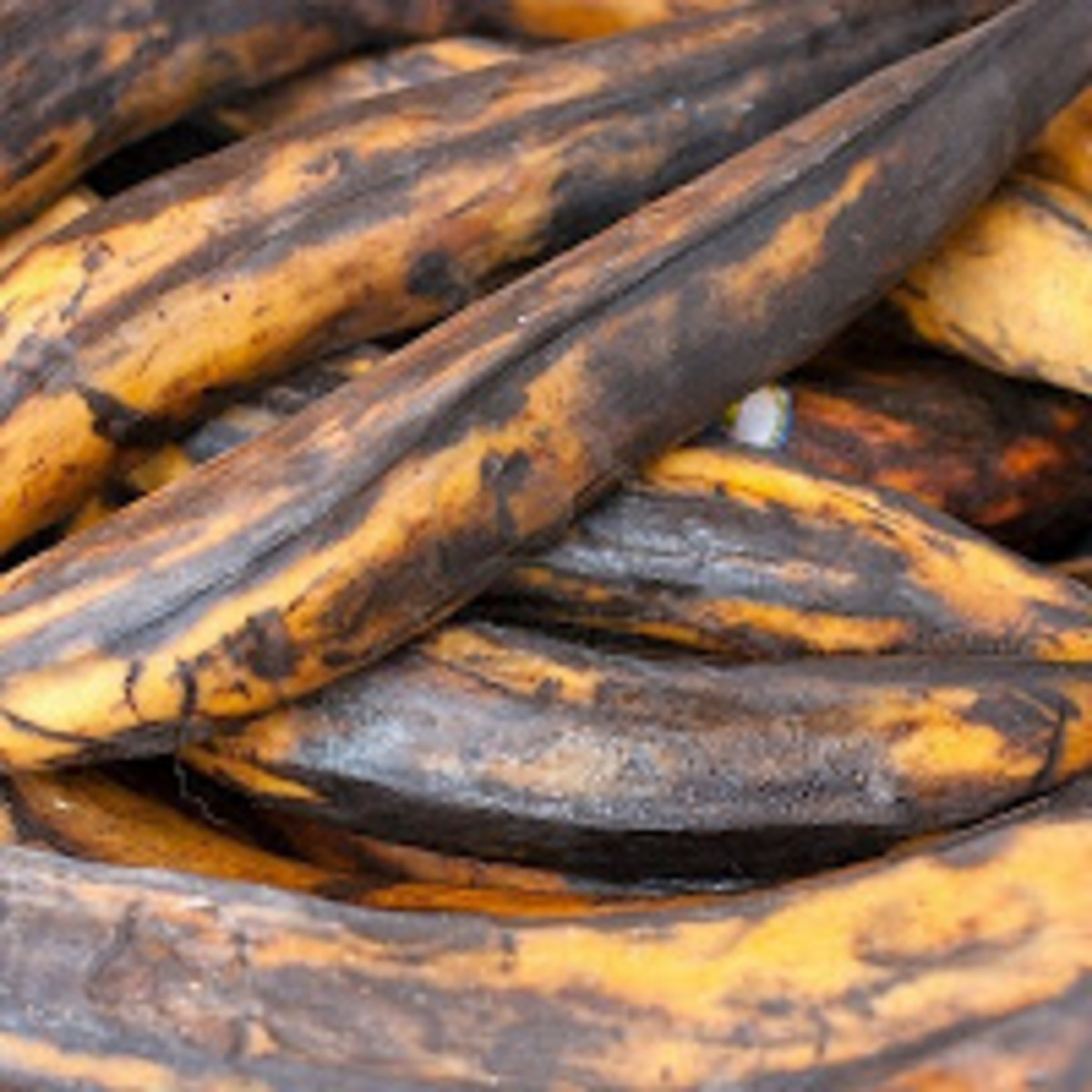 Sweet plantains. Closer to black, the sweetest