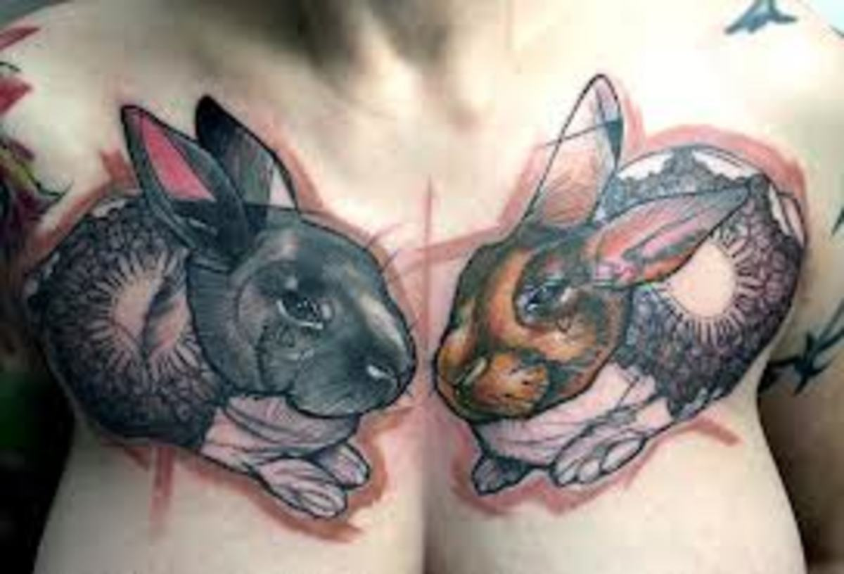 rabbit-tattoos-designs-and-ideas-rabbit-tattoo-meanings-and-pictures