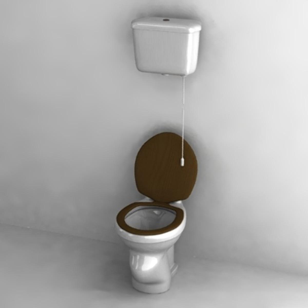 A typical Dutch toilet