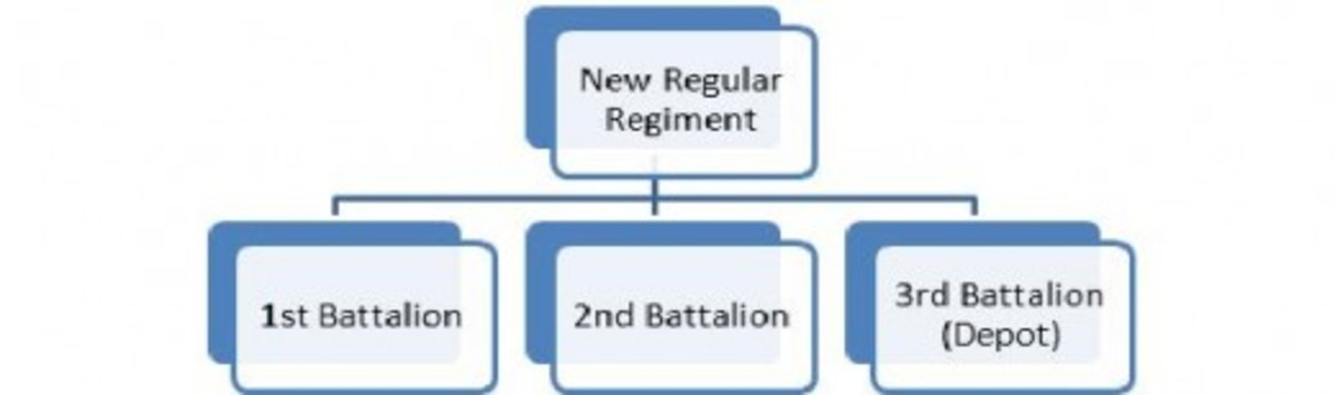 An example of the new structure of a U.S. Regular Regiment composed of 3 Battalions.