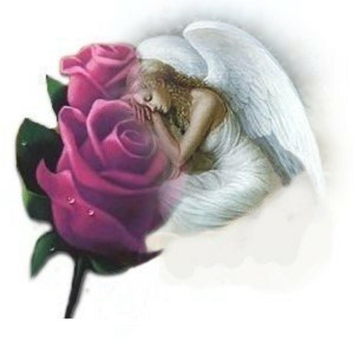 Myangel's Clipart » Religious » Angel in rose