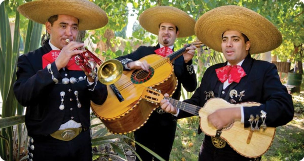 The guitarron and the vihuela instruments used in mariachi bands.