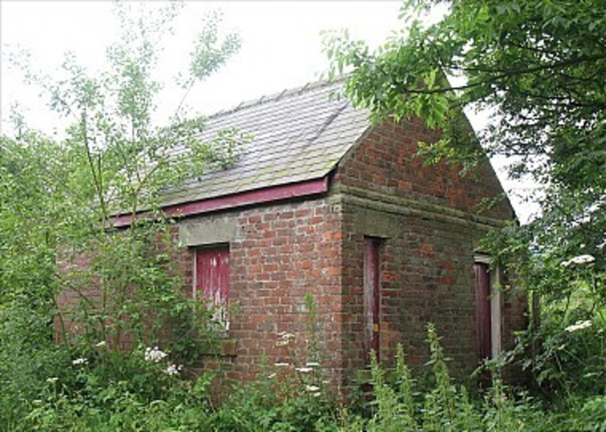 This is the old Cleveland Railway Chaloner Junction signal cabin near Pinchinthorpe Station, half-buried in the undergrowth and hidden by tree growth - picture by Barry Burns