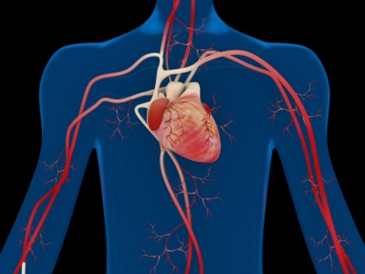 Arteries are channels through which blood (life and power) flows throughout the body and pumped through the heart.