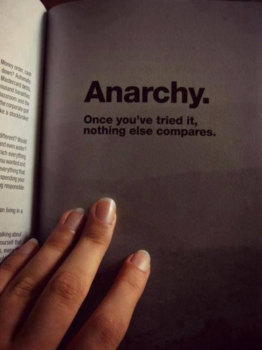 Anarchy: Once You've Tried, Nothing Else Compares