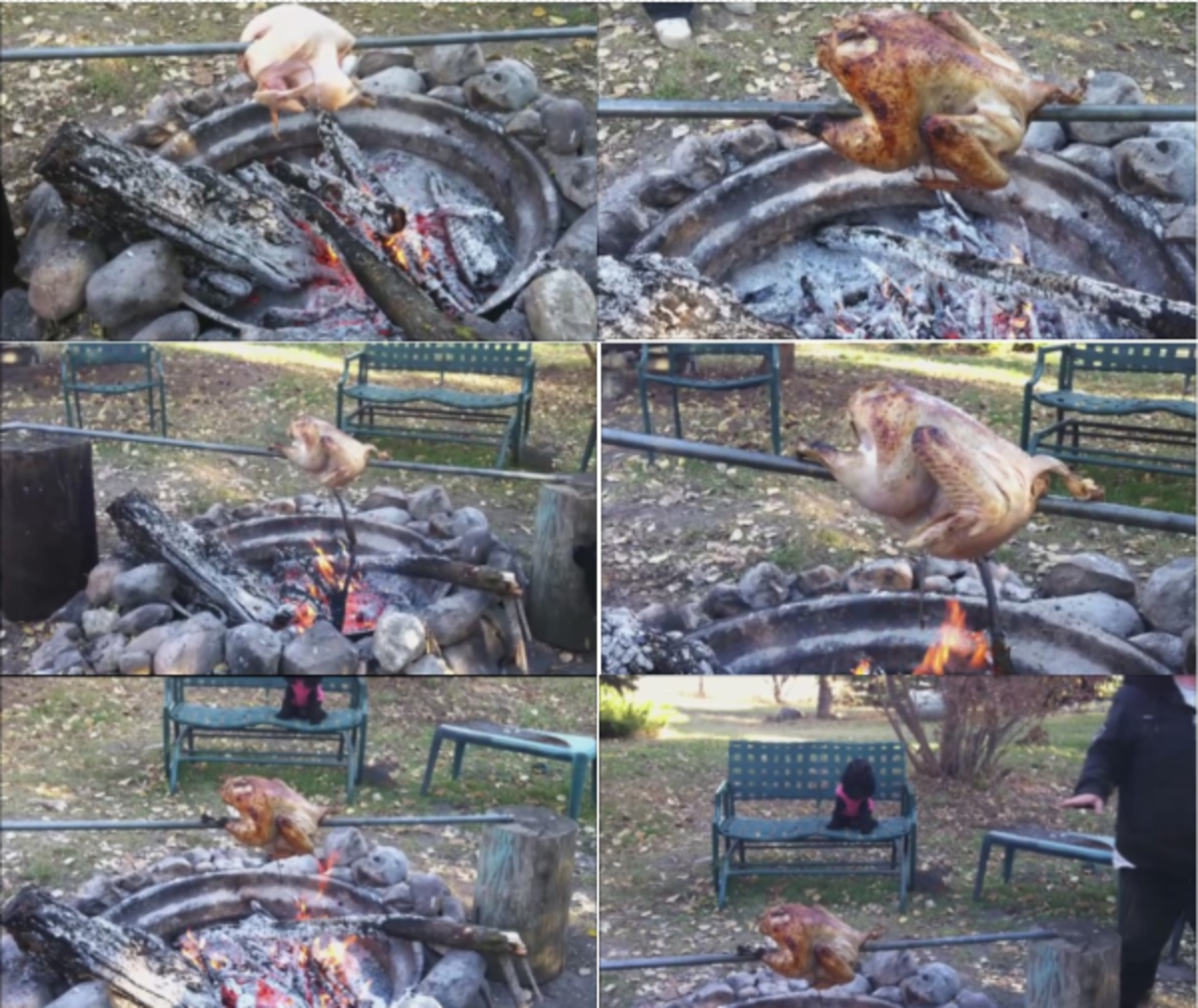 I turn the turkey one quarter turn about every 15 minutes to allow it to cook on all sides. The coal bed must be maintained by adding small amounts of wood to to keep the heat up high.