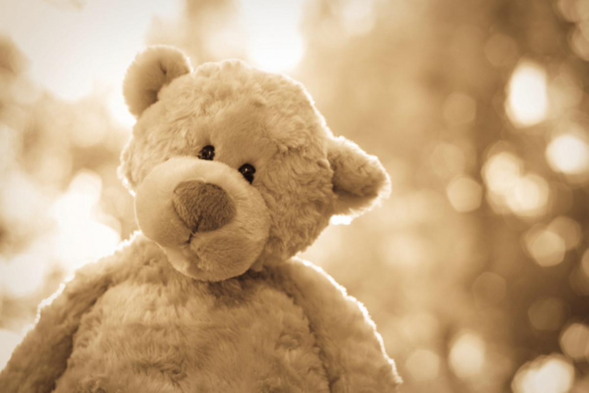 Every little girl needs a teddy bear. Valentine's Day is the perfect time to give her one. This one's Philbin, from Gund.