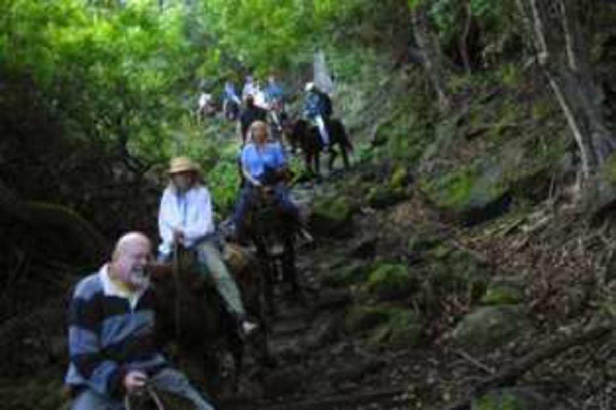 Molokaʻi Mule Rides