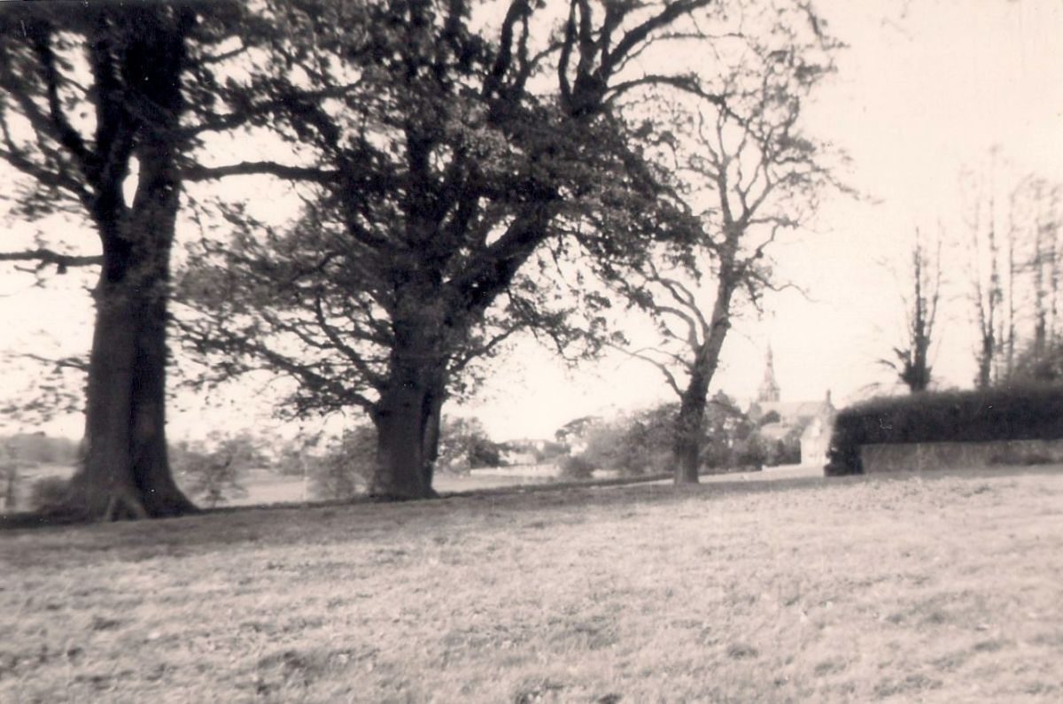 From the south, over the fields towards St Lawrence Church, Hurstpierpoint (taken on Box Brownie)
